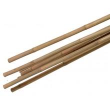 Bamboe (tuin) stokken naturel