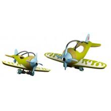 Bamboo e-plane